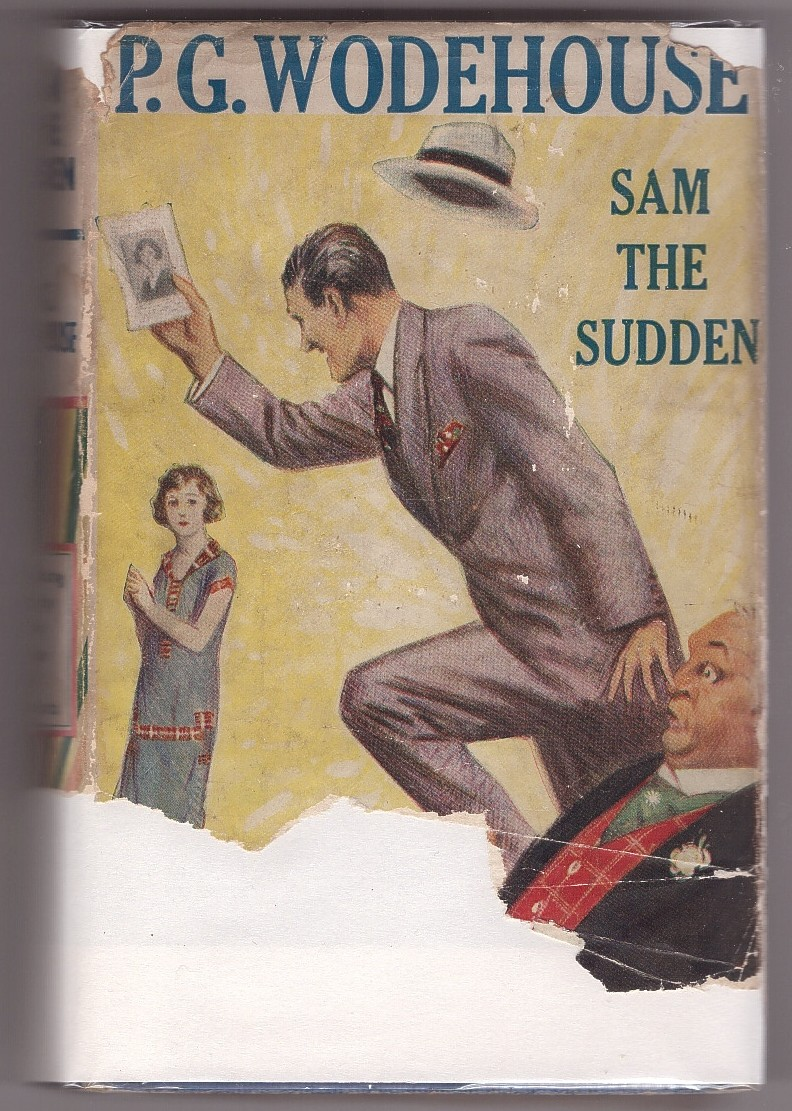 Image for Sam the Sudden,