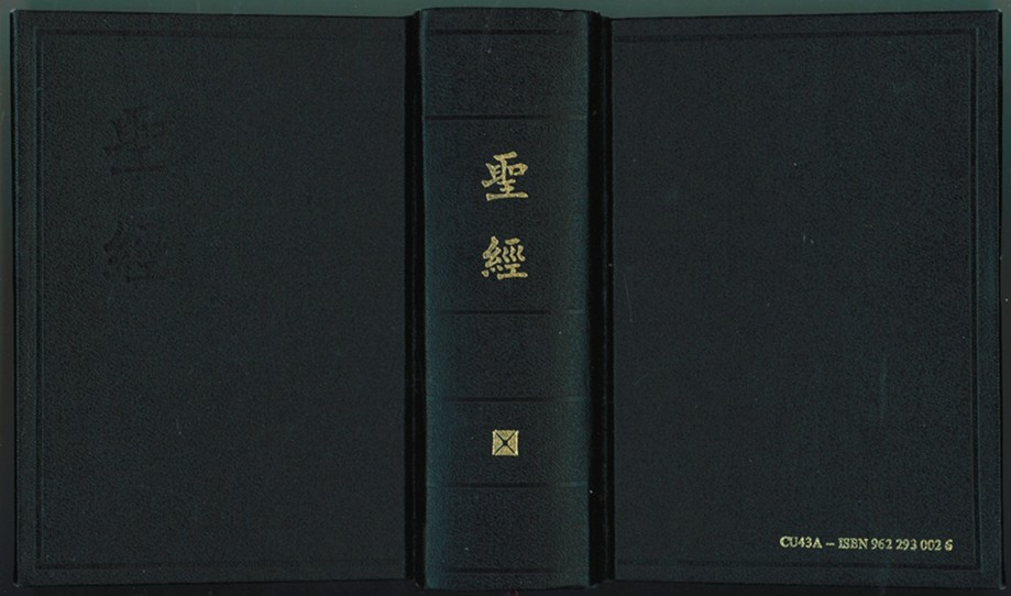 Image for Chinese Bible   Shen Edition
