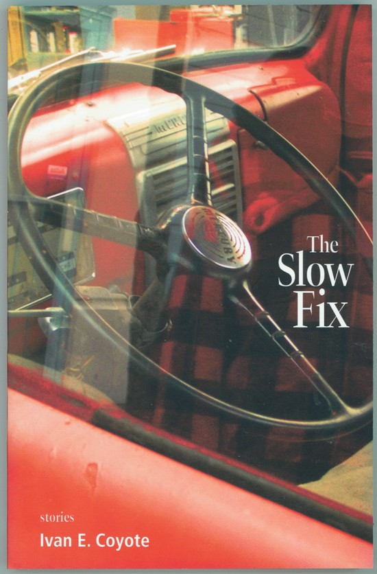Image for The Slow Fix