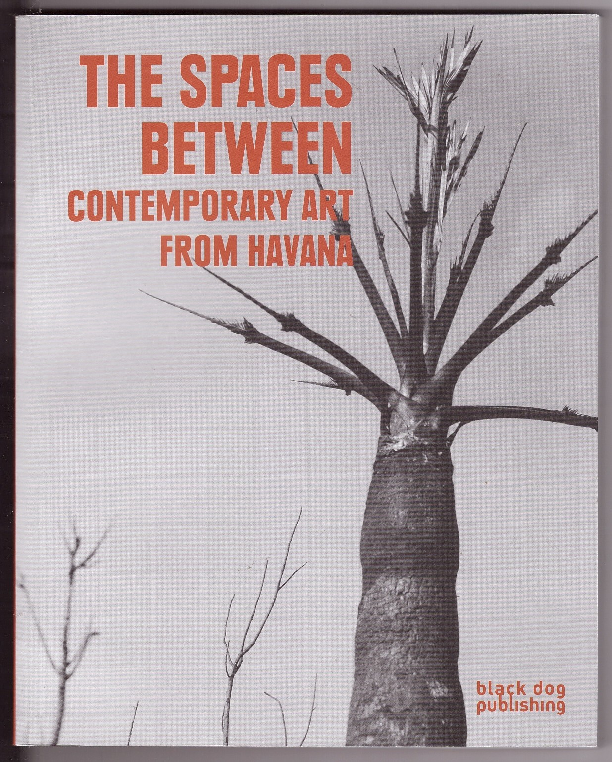 Image for The Spaces Between  Contemporary Art from Havana