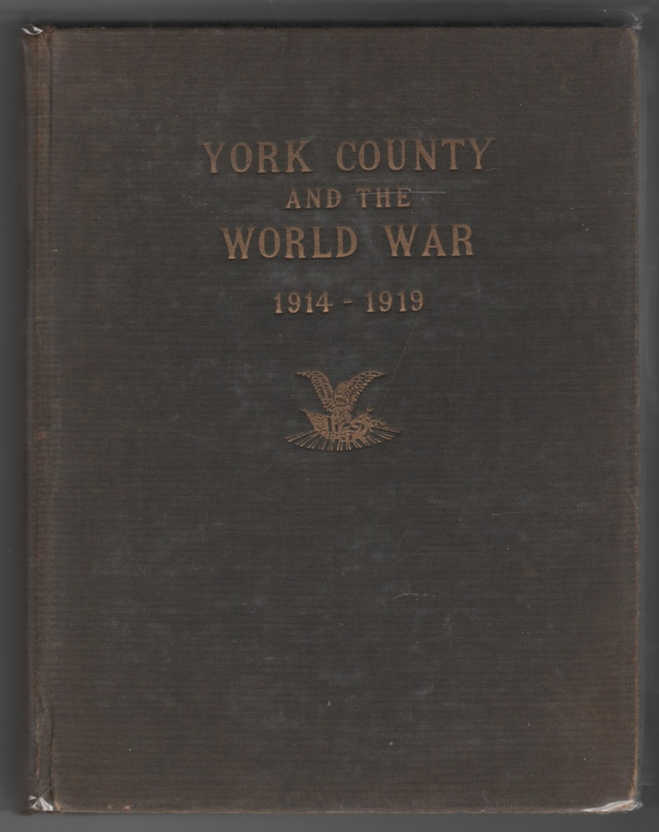 Image for York County in the World War 1914 - 1919