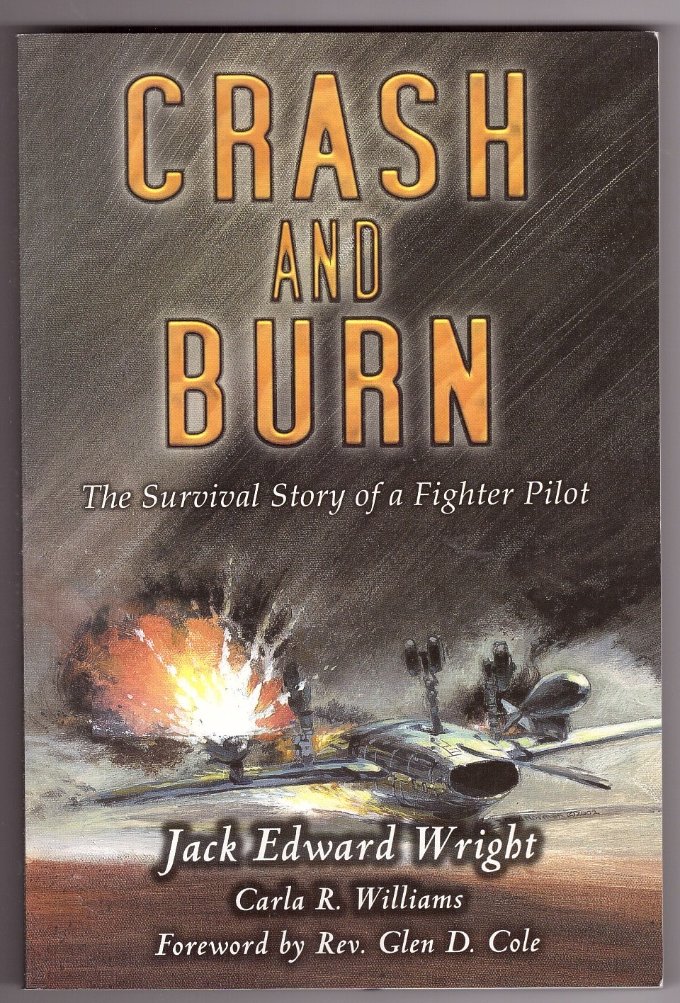 Image for Crash and Burn  The Survival Story of a Fighter Pilot