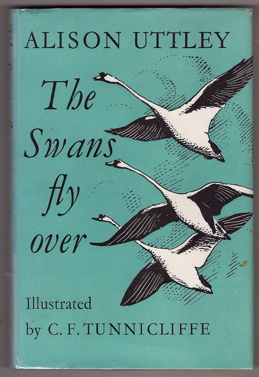 Image for The Swans Fly Over